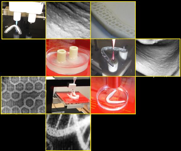 バイオプリンティング技術による人工細胞などの3Dプリント