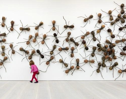 社会的昆虫