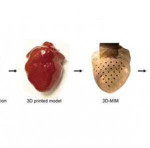 3Dハート